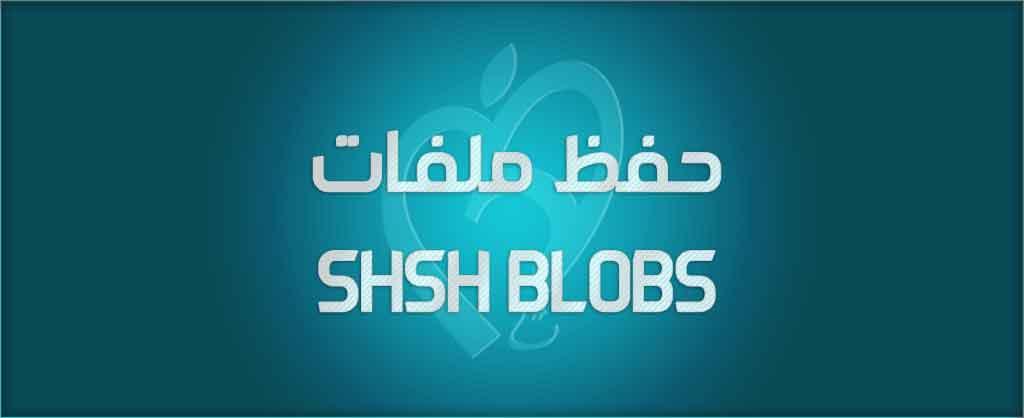 shsh blobs