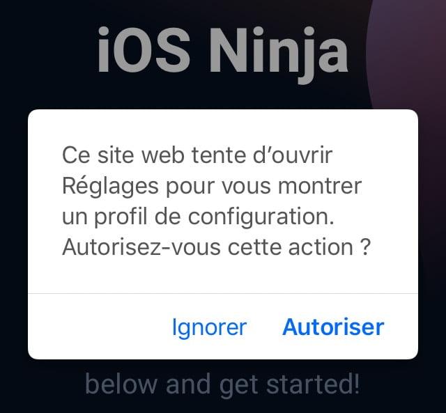 الموافقة على تثبيت iOS Ninja